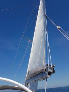 Großsegel Profil Hanse 370 von den Segelmachern bei Black Sails